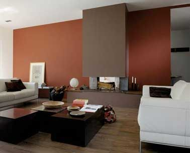 d co salon peinture salon cosy rouge brique et couleur taupe leading. Black Bedroom Furniture Sets. Home Design Ideas