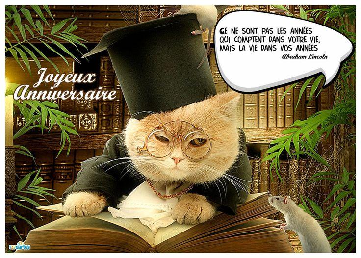 citation carte anniversaire humour avec la photo d 39 un chat citant une citation d. Black Bedroom Furniture Sets. Home Design Ideas