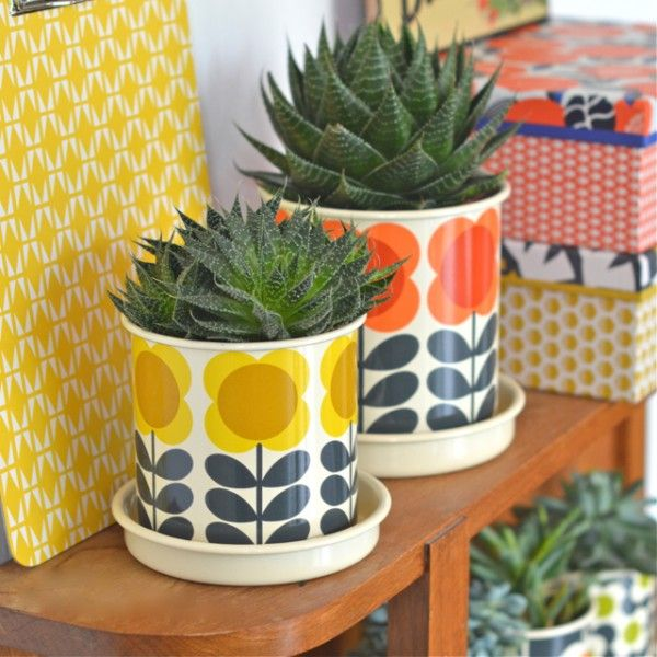 cache pot moyen big spot jaune orla kiely deco graphic leading inspiration. Black Bedroom Furniture Sets. Home Design Ideas