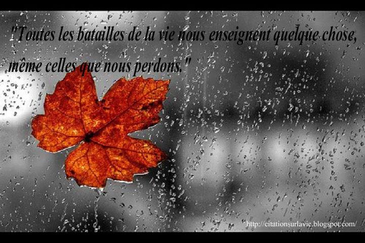 Citation Sur La Vie Les Plus Belles Citations De La Vie