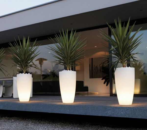 Stunning decoration jardin nuit contemporary for Decoration jardin palmier