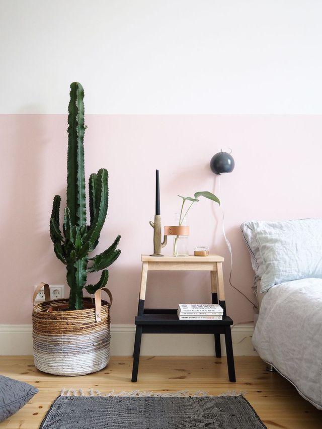 d co salon panier en osier avec cactus dans la chambre leading. Black Bedroom Furniture Sets. Home Design Ideas