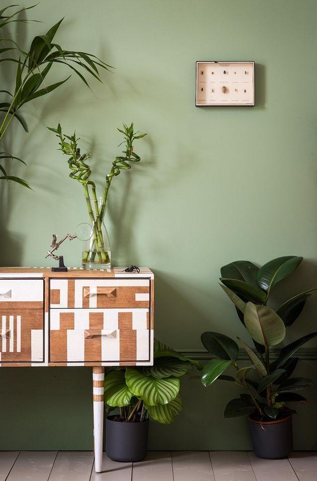 d coration nature deco mur vert kaki leading inspiration culture. Black Bedroom Furniture Sets. Home Design Ideas