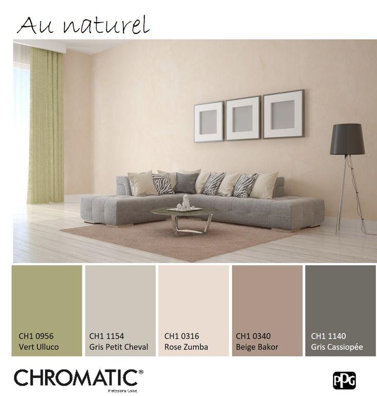 d co salon cette association de diff rentes tonalit s de beige et de ce vert mousse est. Black Bedroom Furniture Sets. Home Design Ideas