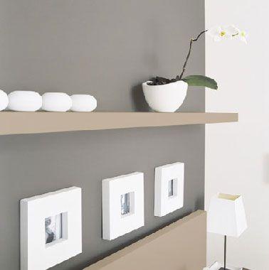 D co salon l 39 association d 39 une peinture grise avec une - Couleur peinture salon taupe ...