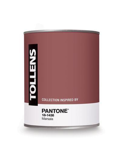 Déco Salon Pot De Peinture Tollens Couleur Marsala Couleur De L