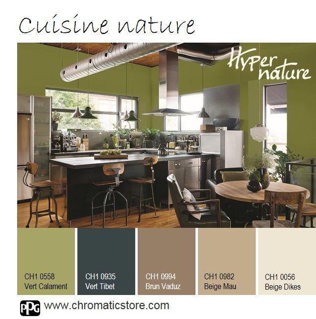 D co salon cette cuisine sublime l 39 esprit nature entre - Deco salon nature ...