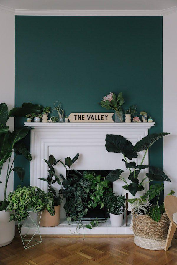 d coration nature chemin e urban jungle avec un mur vert canard qui fait ressortir les. Black Bedroom Furniture Sets. Home Design Ideas