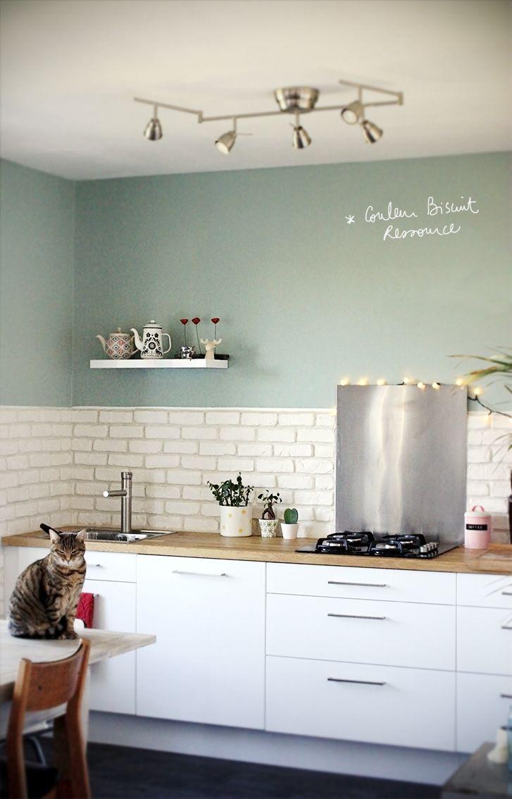 Cuisine Blanc Laqué Plan Travail Bois Couleur Ressource Vert