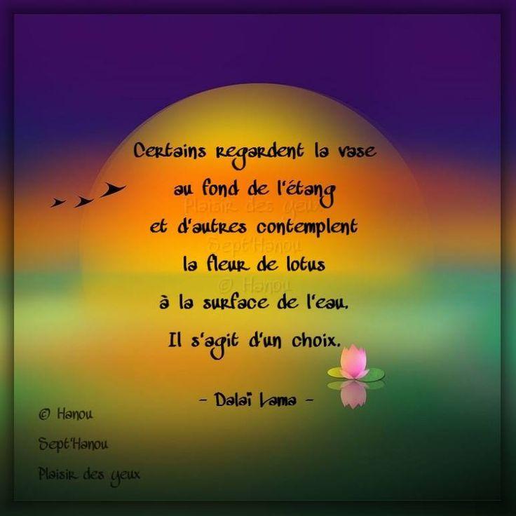 dalai lama citations femmes pdf